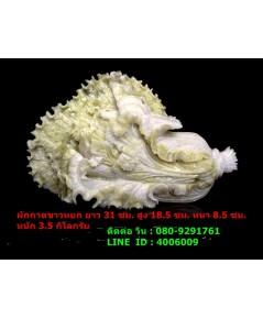 ผักกาดขาวหรือ แปะฉ่าย แกะสลักจากหินหยกทั้งก้อน ขนาดใหญ่ 31 ซม. หนัก 3.5 กิโลกรัม