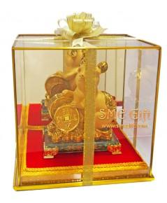 หนูทองนำโชค เกาะเหรียญทอง + ตู้กระจก