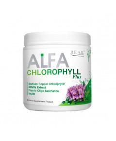 Alfa Chlorophyll Plus Fiber By Real Elixir อัลฟ่า คลอโรฟิลล์ ราคาส่งถูกๆ W.155 รหัส GU30