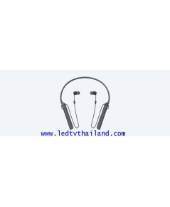SONY หูฟังอินเอียร์ไร้สาย | WI-C400