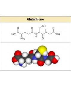 gallovax สารสกัด กลูต้า + gallaic acid อนุพันธ์วิตามิน 1000ml