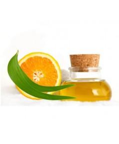 Orange Oil (ส้ม) 450ml