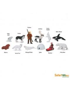 Safari Ltd. : SFR681604 โมเดลสัตว์แบบแพ็คหลอด Arctic