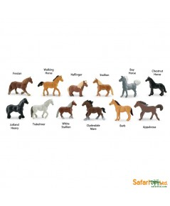 Safari Ltd. : SFR695604* โมเดลสัตว์แบบแพ็คหลอด Horses