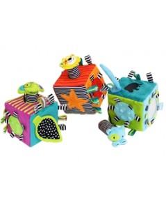 ABO BTB23: Fun Cube