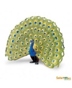 Safari Ltd. : SFR264629 โมเดลสัตว์ Peacock
