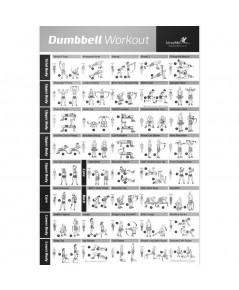 NewMe Fitness : NMF5173457* โปสเตอร์ท่าออกกำลังกายด้วยดัมเบล Dumbbell Workout Exercise Poster