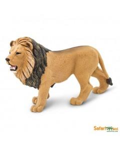 SFR 290229 : Lion