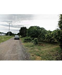 ที่ดินใกล้ทะเล สวนผลไม้มะม่วง อ.ปราณบุรี 2-3-64 ไร่