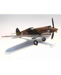 HOBBY MASTER 1:48 P-40 Robert R.T Smith HA9203