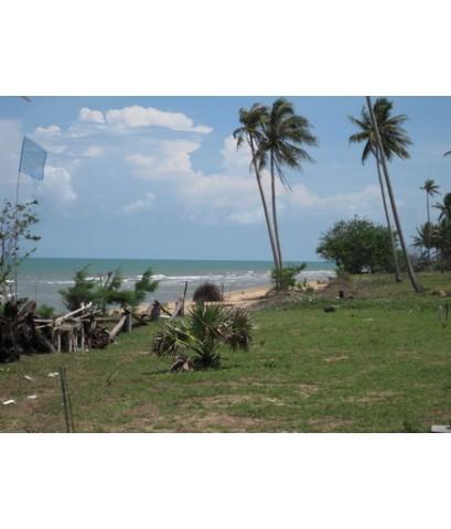ขาย ที่ดิน ติดทะเล ชุมพร พื้นที่ 1 ไร่ ด้านหน้าติดทะเล ด้านหลังติดถนนลาดยาง เพียง 2 ล้าน