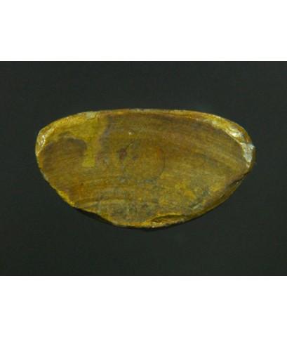 หลวงพ่อเงิน บางคลาน ออกวัดบึงนาราง ปี15 เนื้อทองเหลืองผิวหิ้งกลับแดง