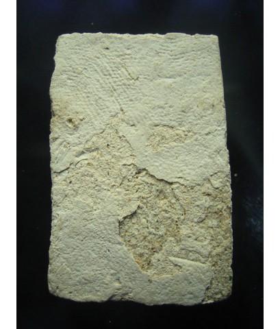 พระสมเด็จพิมพ์พระประธาน หลวงปู่นาค วัดระฆัง ปี 2492 (ขายแล้ว)