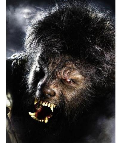 หนังฝรั่งThe Wolfman มนุษย์หมาป่า ราชันย์อำมหิต /พากษ์ไทย+ซับไทย DVD 1แผ่น