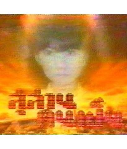 สุสานคนเป็น (อภิรดี) /ละครไทย 13แผ่นจบ