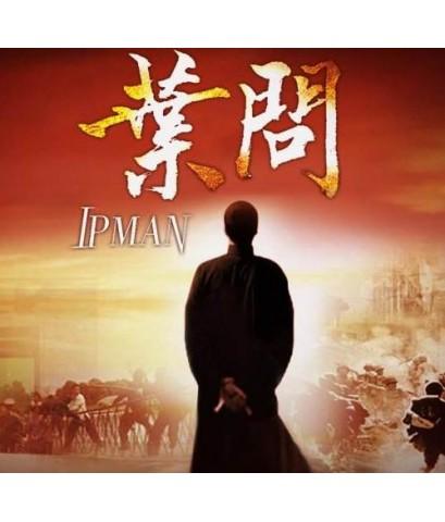 ยิปมัน ปรมาจารย์เจ้ากังฟู (IPMAN 2013) /หนังจีนชุด /พากษไทย HDTV 12 แผ่นจบ