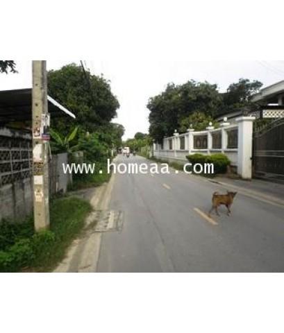 บ้านเดี่ยว 2 ชั้น (สร้างเอง) เนื้อที่ 100 ตร.วา ซ.ไทรม้า13 (ไทรม้าใต้) อ.เมือง นนทบุรี (H1748)