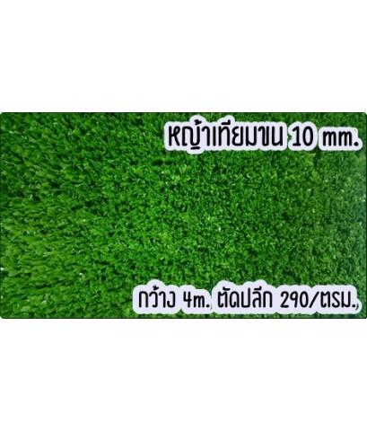 ขายหญ้าเทียม ขน 10 มิล ตัดปลีก ตรม. ละ 290 บาท