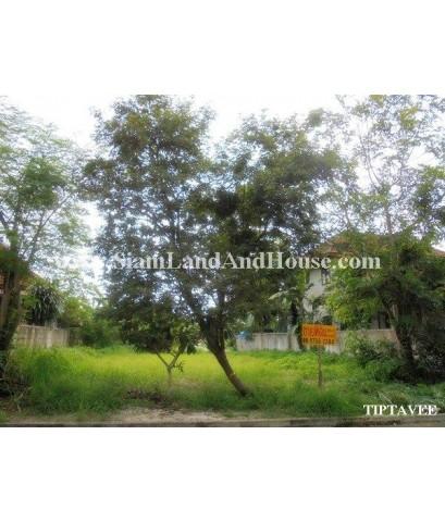 22413 ขายที่ดินเชียงใหม่ ที่ดินเวียงดอย ป่าป้อง ดอยสะเก็ด เชียงใหม่
