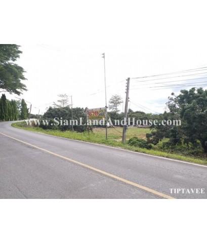 22031 ขายที่ดินริมถนนเลียบน้ำปิง สวนลำไยขุนคง หางดง เชียงใหม่