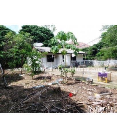 22378 ขายที่ดินเชียงใหม่ ที่ดินถูก ใกล้โรงพยาบาลสันป่าตอง ทุ่งสะโตก สันป่าตอง เชียงใหม่