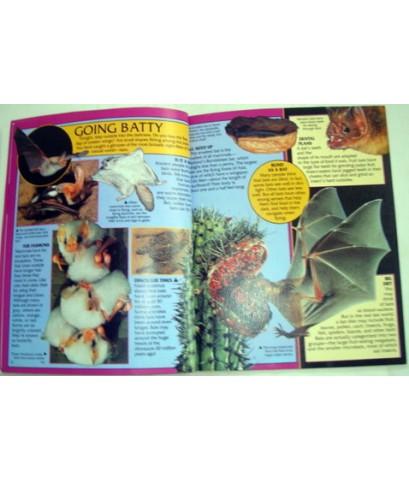หนังสือความรู้ Eye On Nature BATS