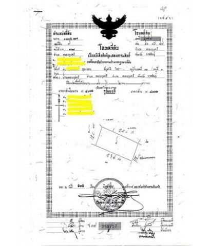 สวนยางพารา 16 ไร่ 2 งาน จ.กาฬสินธุ์