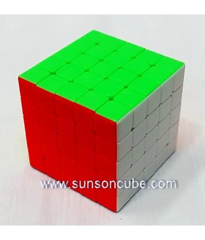 5x5x5 Shengshou Gem  / Body color ( Stickerless )