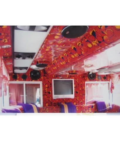 รถบัสให้เช่า รถปรับอากาศ รถบัส 8ล้อ 2 ชั้น VIP 49-50 ที่นั่ง  รุ่นใหม่ล่าสุดให้เช่า