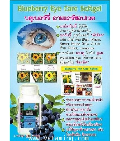 BGM Softgel บลูเบอร์รี่ อายแคร์ซอฟเจล 1แถม 1ราคาถูก1xxx Blueberry Eyecare Softgel