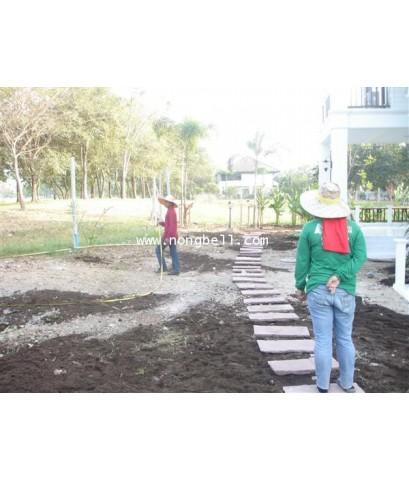ภาพการจัดสวนของบ้านลูกค้าร้านน้องเบลล์ หมู่บ้านฟลอร่าวิว ปารค์