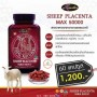 ศูนย์จำหน่ายรายใหญ่ รกแกะ Auswelllife Premium Sheep Placenta MAX 50,000 mg.
