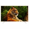 55 TCL 4K Android Smart Digital TV 55P2US