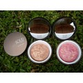 PRO YOU cosmetics SOLID Plus Blusher