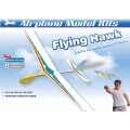 HF-022 FLYING HAWK HAND GLIDER