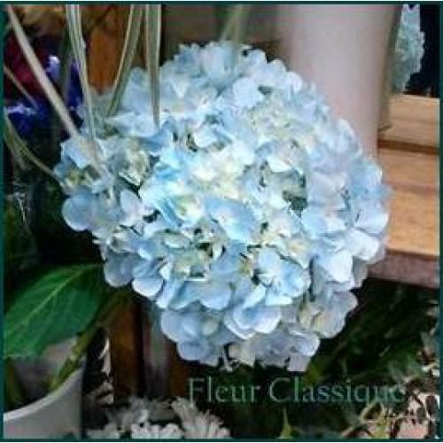 ช่อดอกไม้สด (bouquet)